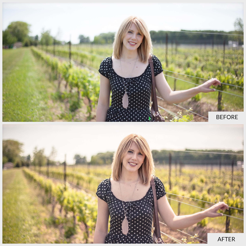 Vineyard-BA