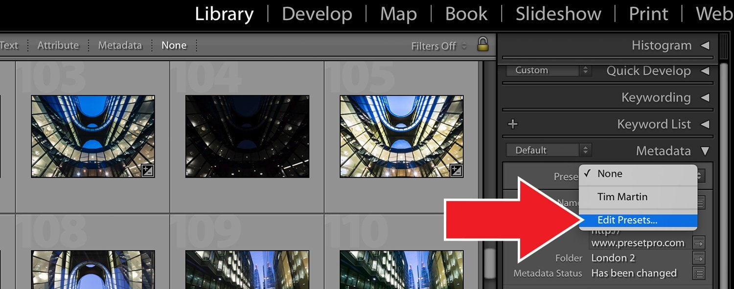 How To Add Metadata to your Photos in Lightroom