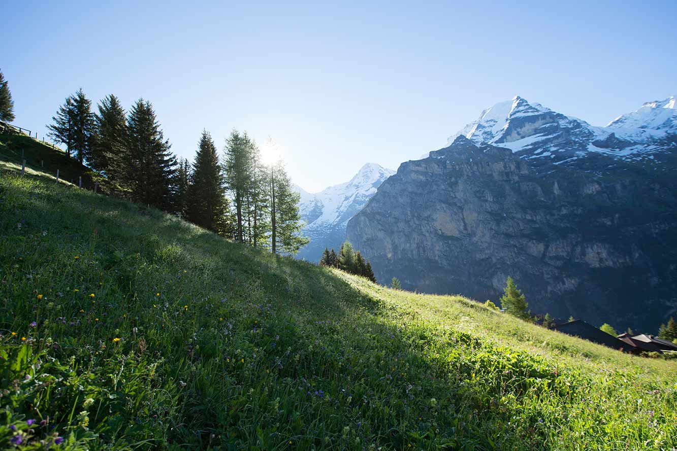 Bundle-Three-Beautiful-Lightroom-Presets-Cityscape-Extreme-Landscape-Dynamic Swiss Before