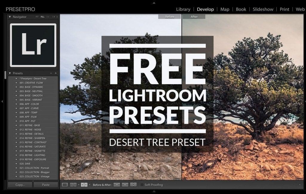 Free-Lightroom-Preset-Desert-Tree-Cover