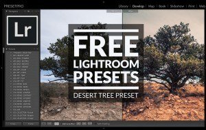 Free-Lightroom-Preset-Desert-Tree-Cover
