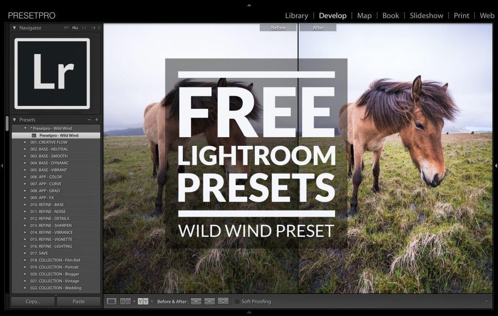 Free-Lightroom-Preset-Wild-Wind