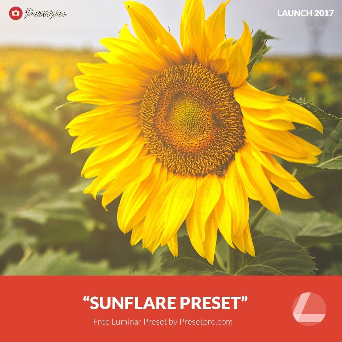Free-Luminar-Preset-Sunflare