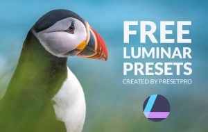 Free-Luminar-Presets-by-Presetpro.com