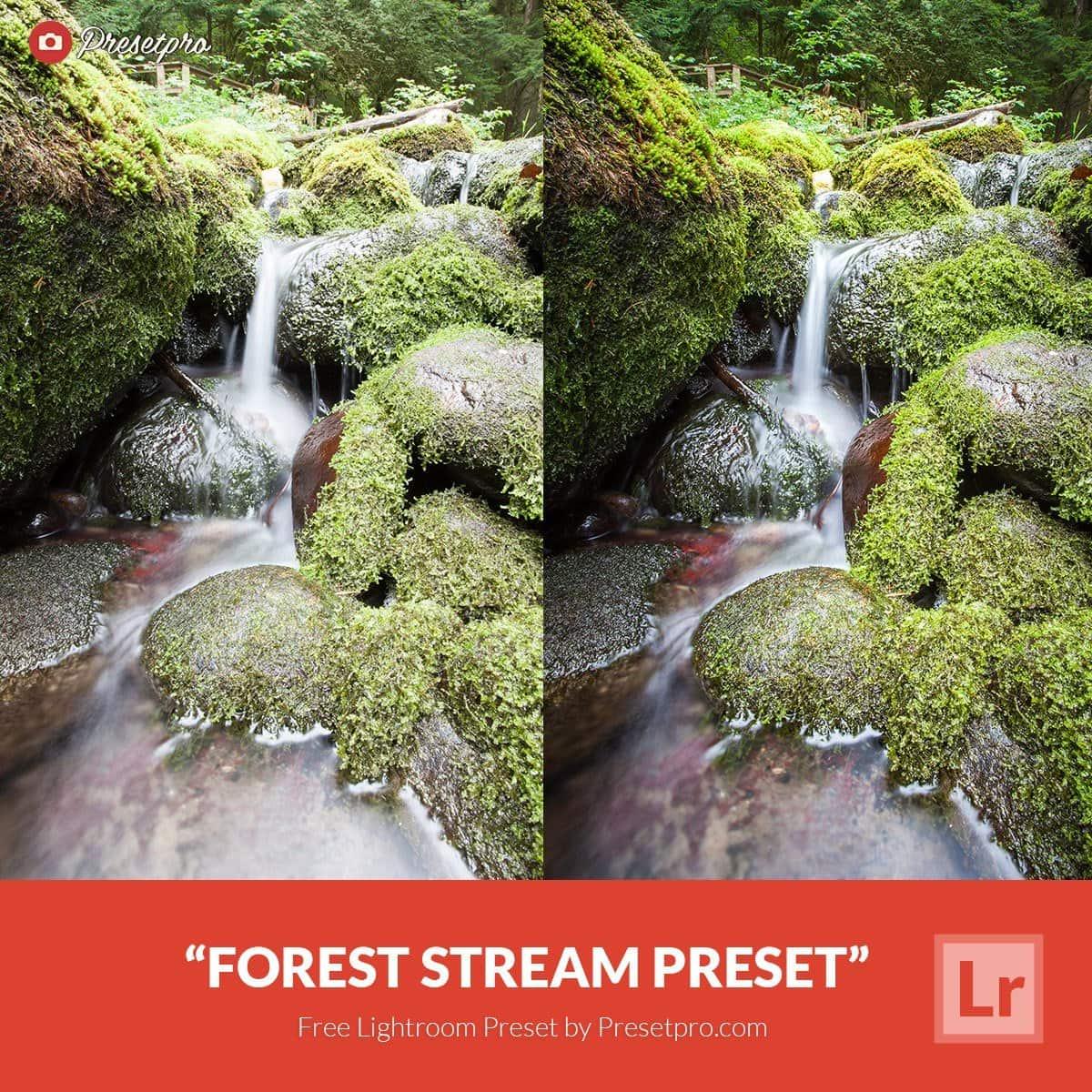 Free-Lightroom-Preset-Forest-Stream
