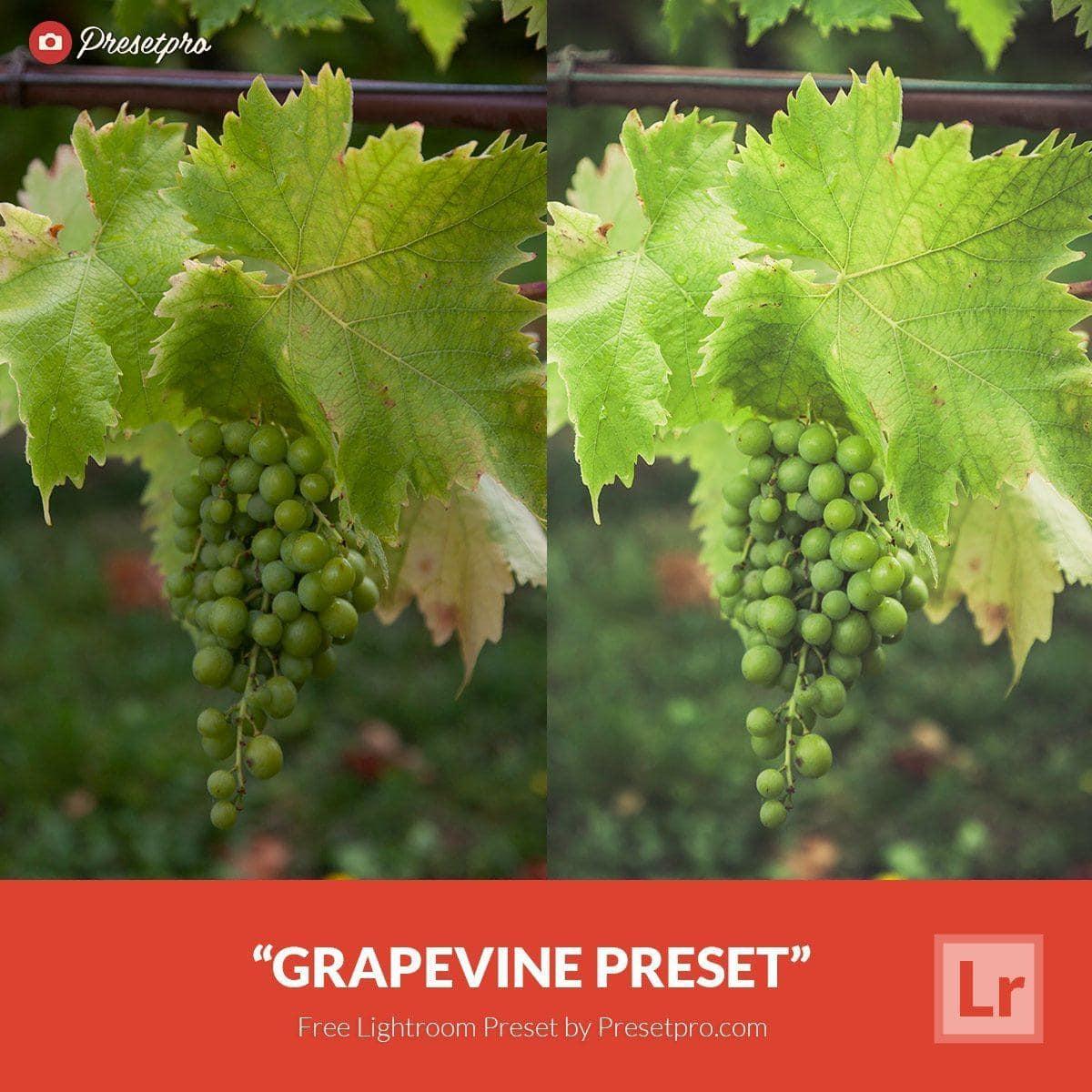 Free-Lightroom-Preset-Grapevine