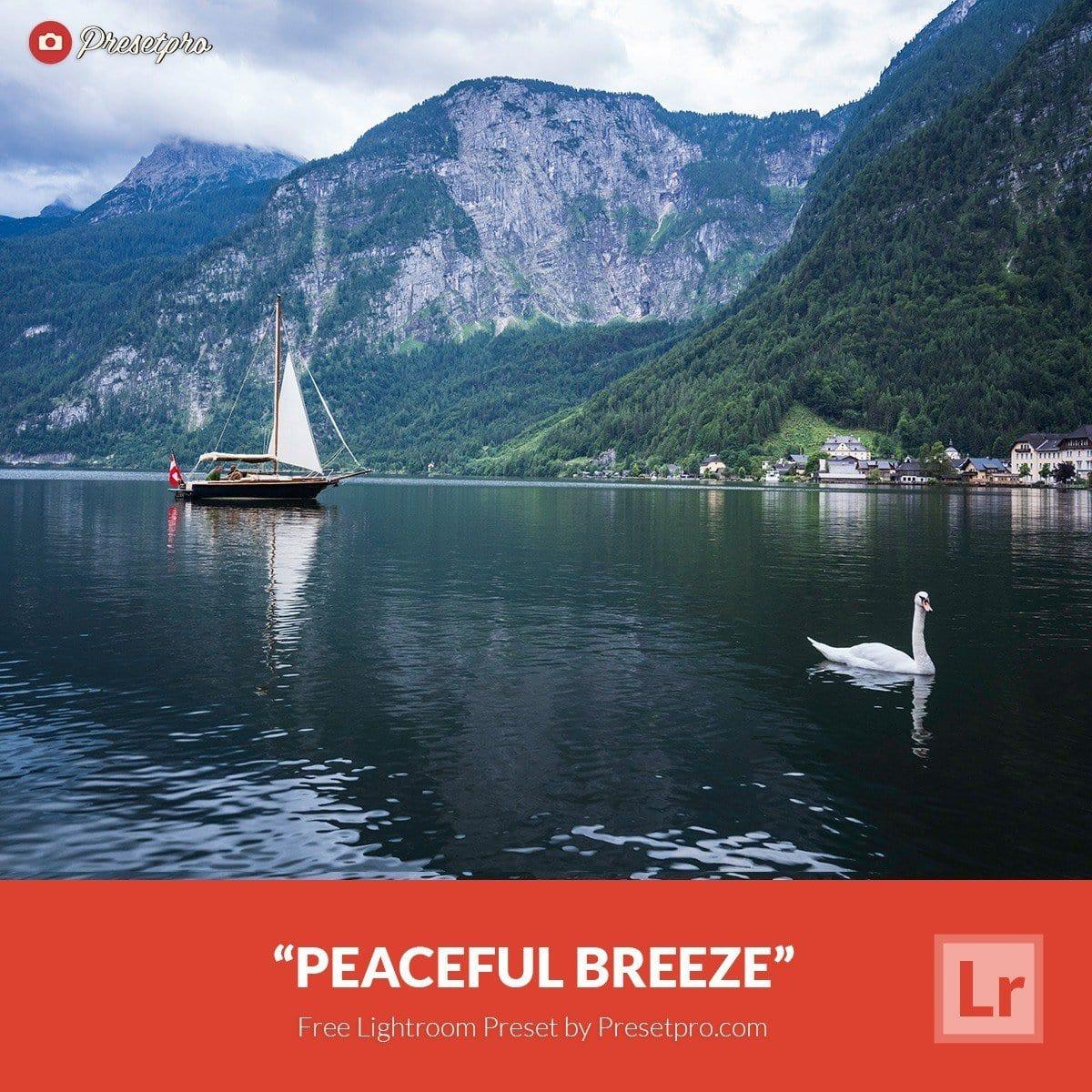 Free-Lightroom-Preset-Peaceful-Breeze-Presetpro
