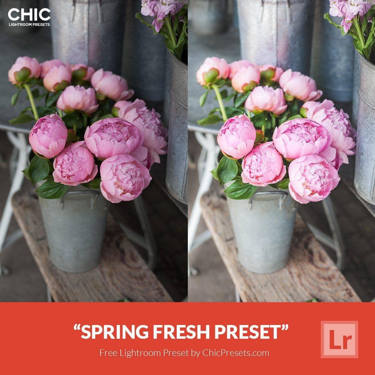 Free-Lightroom-Preset-Spring-Fresh-Chic-Presets