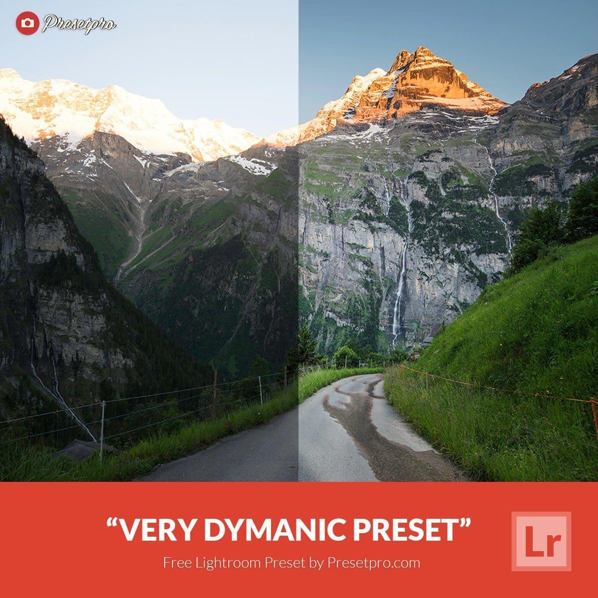 Free-Lightroom-Preset-Very-Dynamic