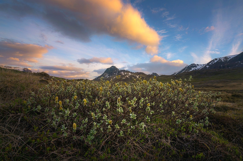Presetpro Hdr Photography Icelandic Landscape