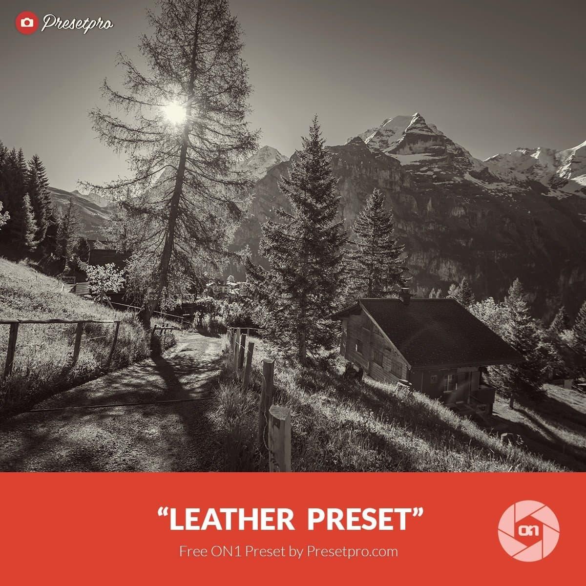Free-On1-Preset-Leather-Presetpro.com