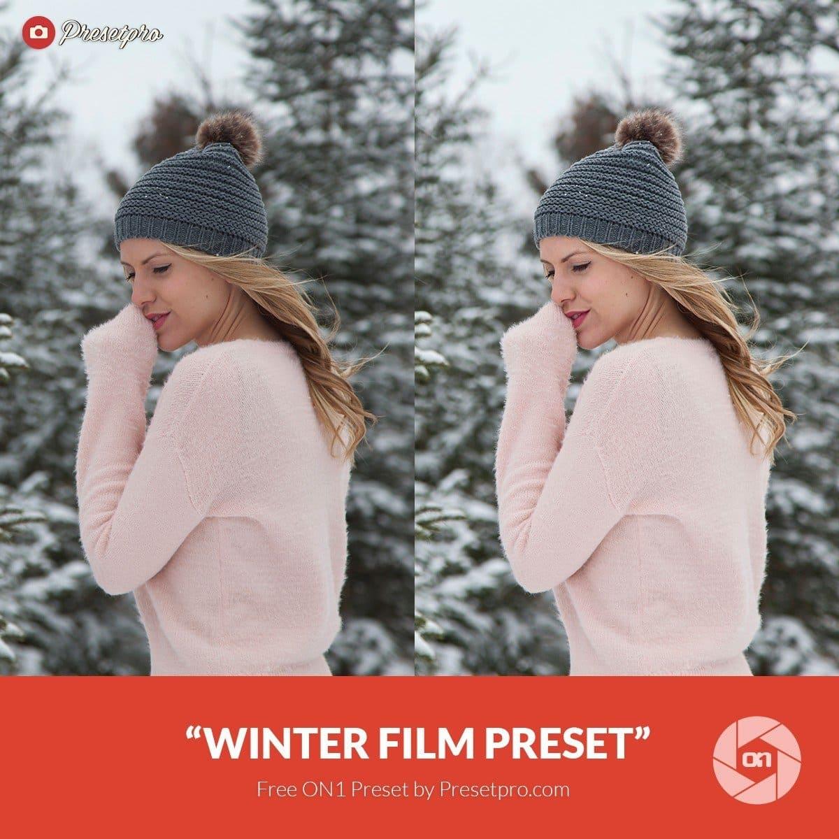 Free-On1-Preset-Winter-Film-Presetpro.com