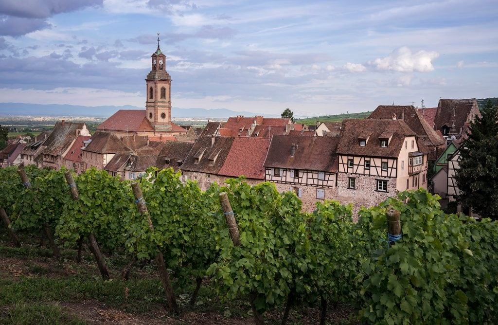 Landscape-Photography-French-Vineyards-Presetpro.com
