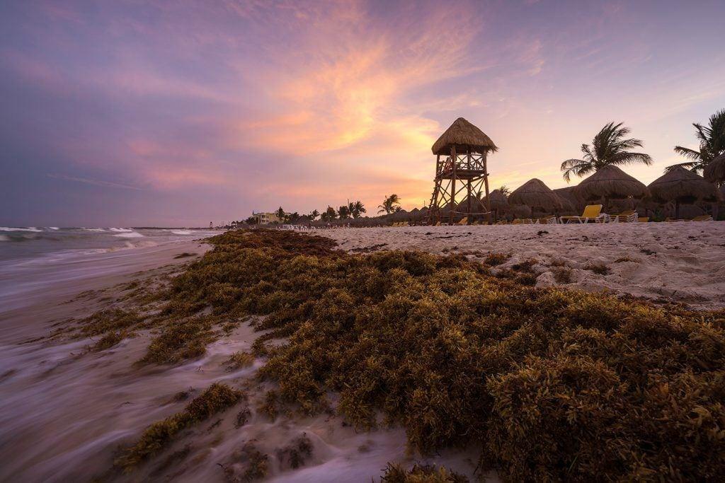 Landscape Photography Surf's Up Mexico Presetpro.com