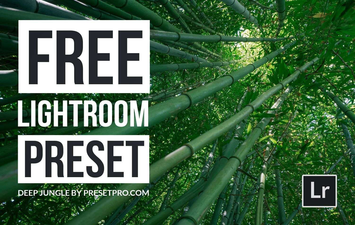 Free-Lightroom-Preset-Deep-Jungle-Cover-Presetpro.com