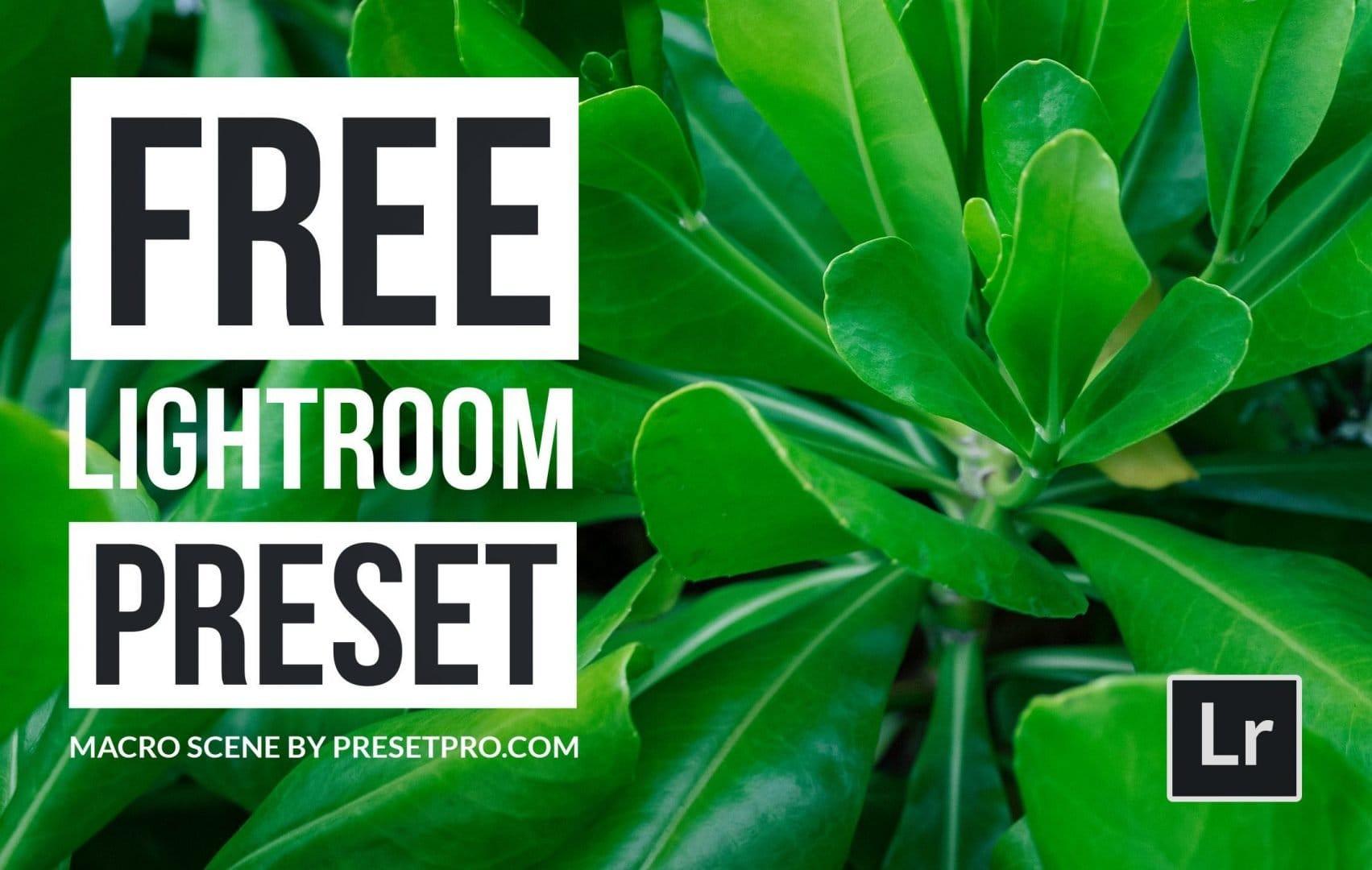 Free-Lightroom-Preset-Macro-Scene-Cover-Presetpro.com