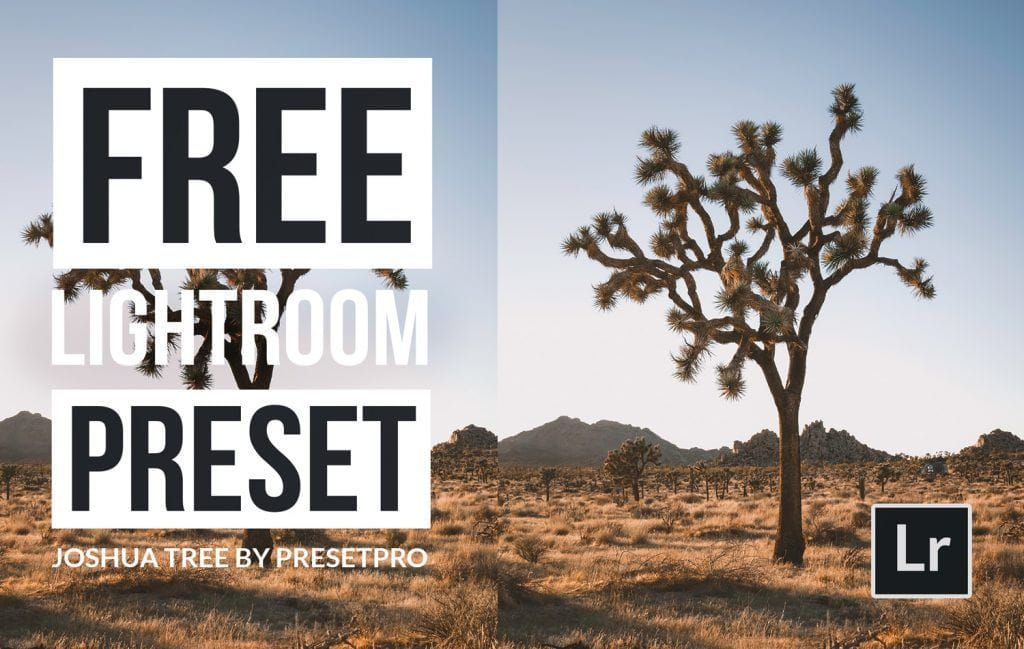 Free-Lightroom-Preset-Joshua-Tree-Cover