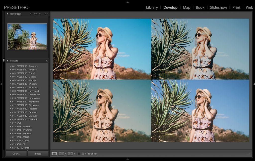 5-Creative-Looks-in-Lightroom-Joshua-Tree-Presetpro.com