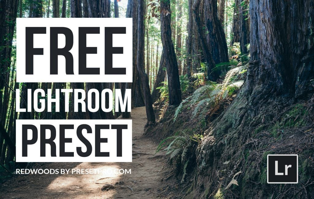 Free-Lightroom-Preset-Redwoods-Presetpro-Cover