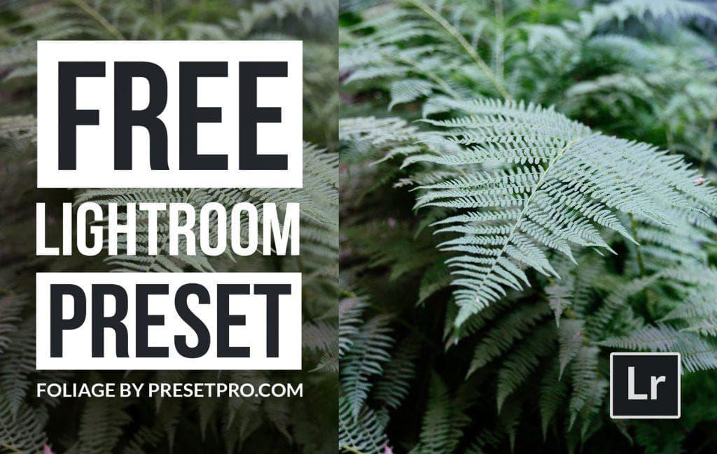 Free-Lightroom-Preset-Foliage-Cover-Presetpro.com