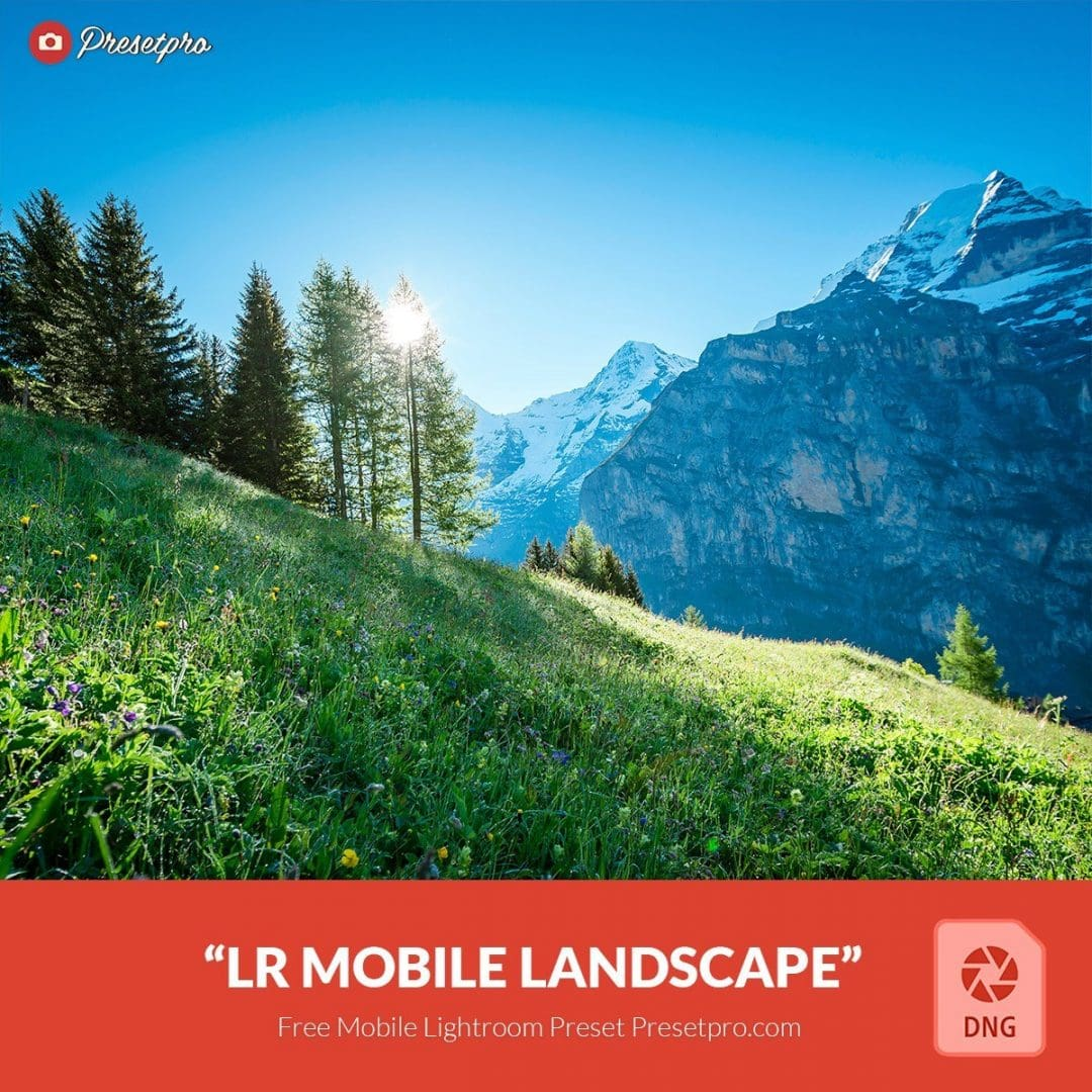 Free-Mobile-DNG-Preset-for-Lightroom-Mobile-Landscape