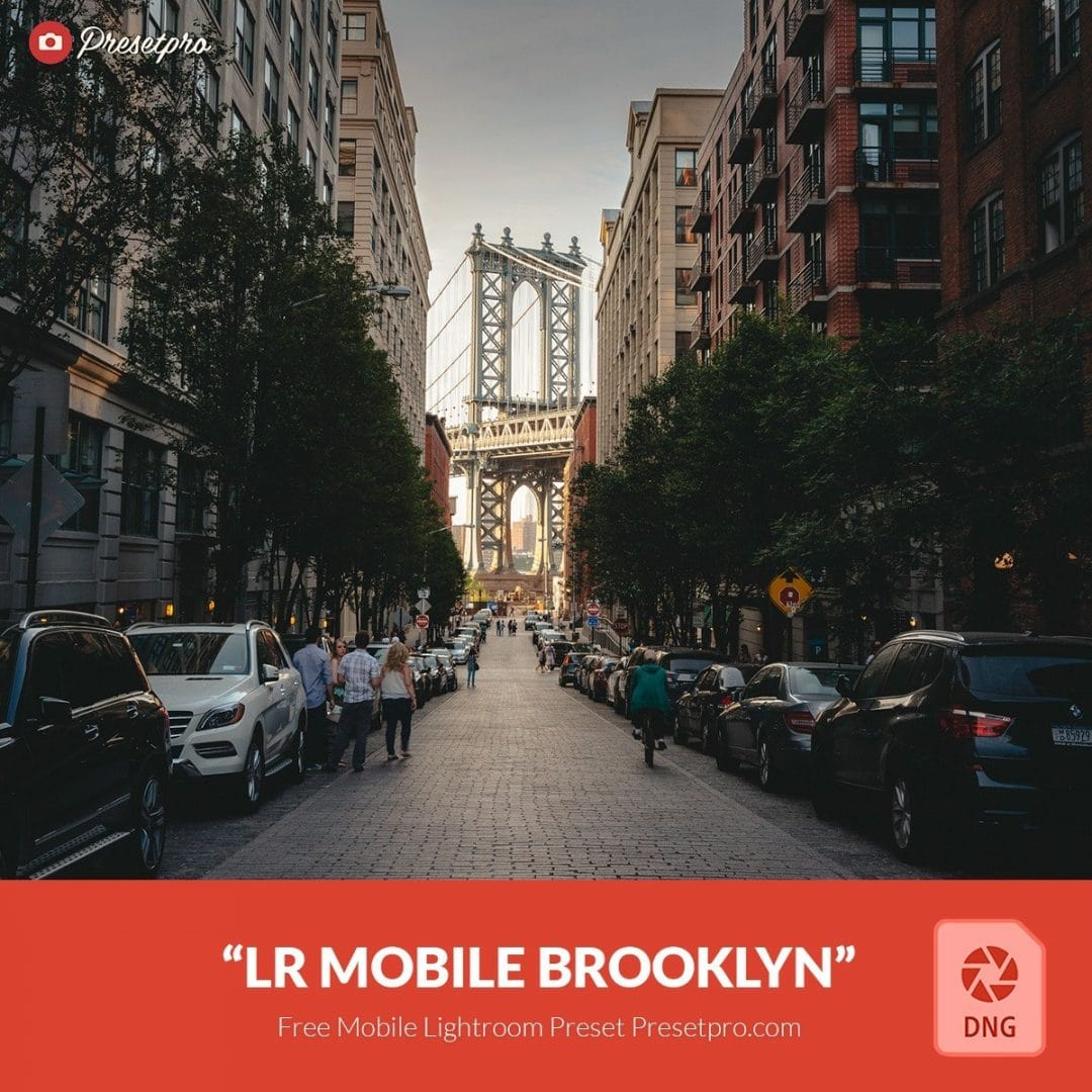 Free Mobile DNG Presets for Lightroom | Presetpro com