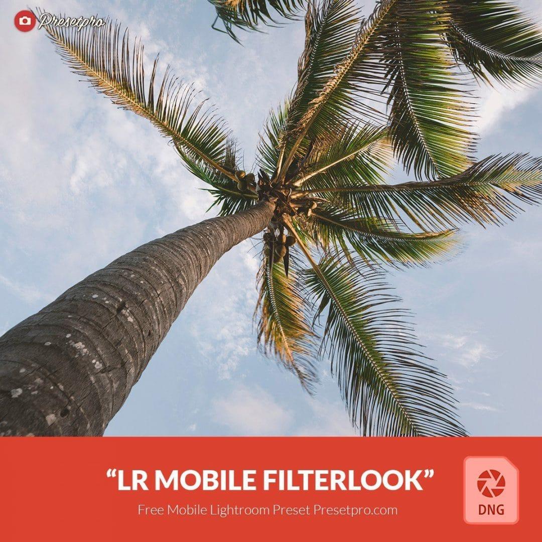 Free-Mobile-DNG-Preset-for-Lightroom-Filterlook
