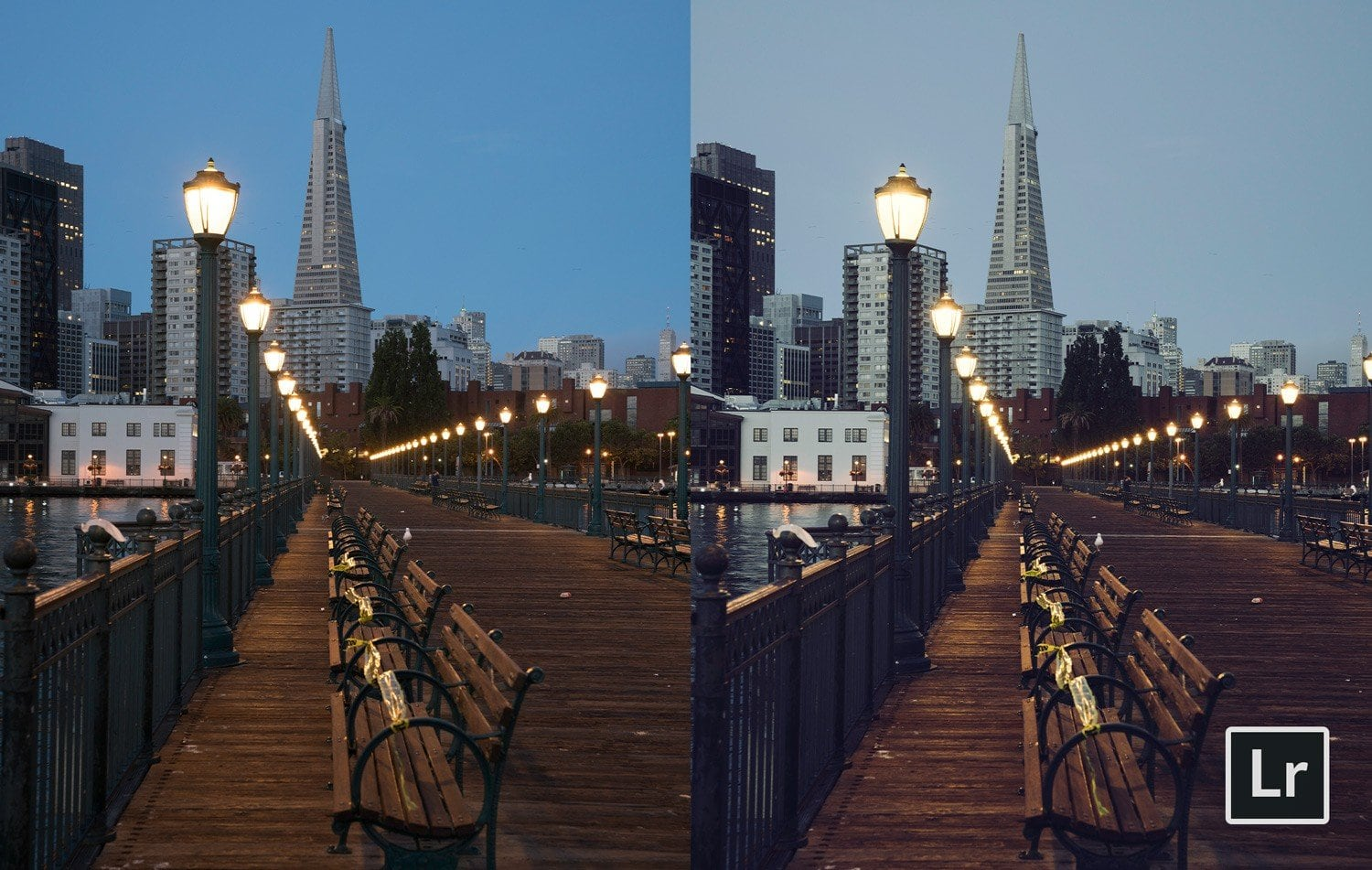 Free-Lightroom-Preset-Film-Emulation-Before-and-After-Presetpro