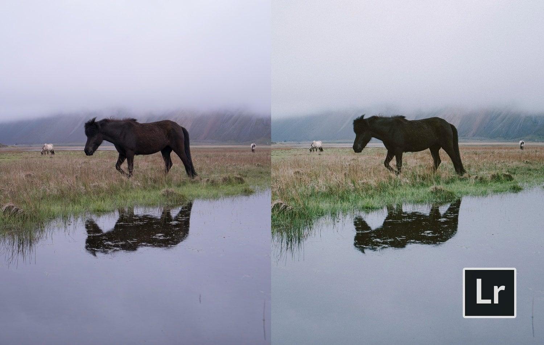 Free-Lightroom-Preset-Fogged-Film-Before-and-After-Presetpro.com
