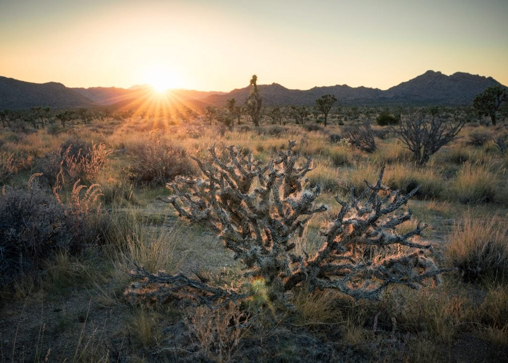 Landscape-Photography-Desert-Sundown-Presetpro.com