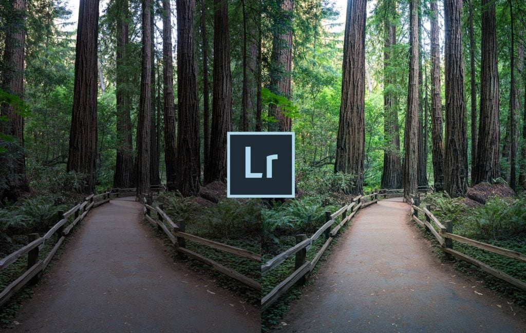 Free-Lightroom-Preset-Trail-Blaze-Cover-Presetpro.com