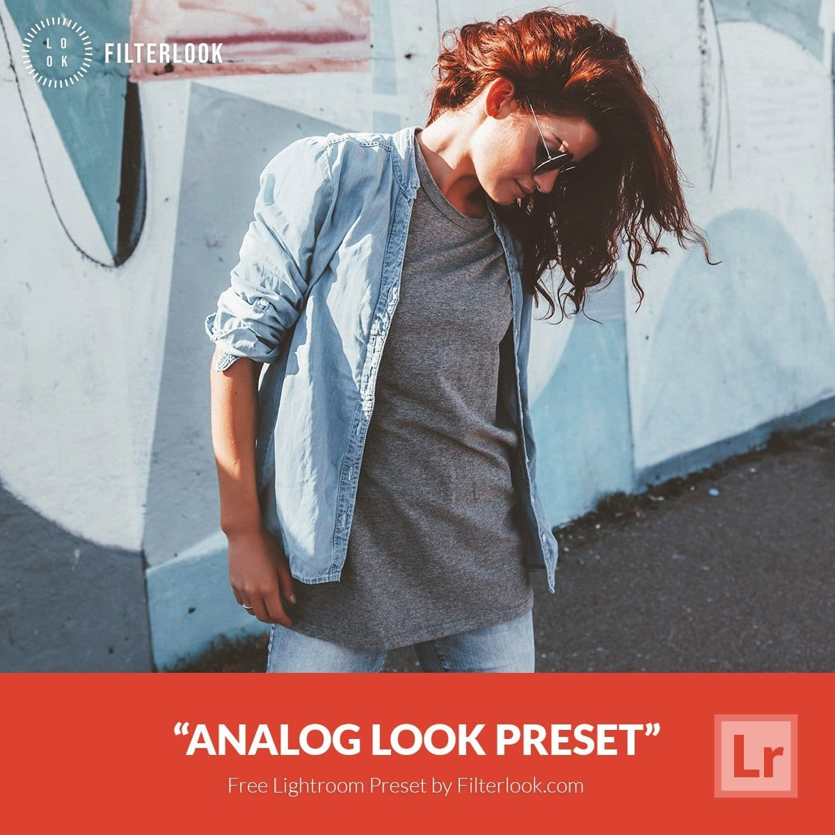 Free-Lightroom-Preset-Analog-Look-Filterlook.com