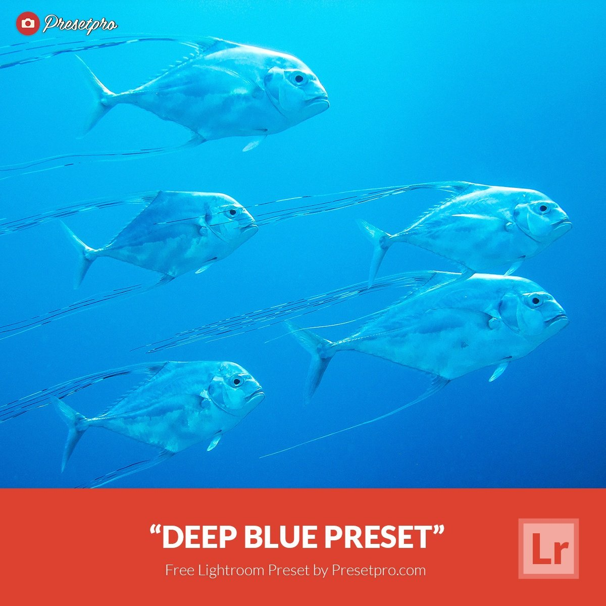 Free-Lightroom-Preset-Deep-Blue-Presetpro.com_