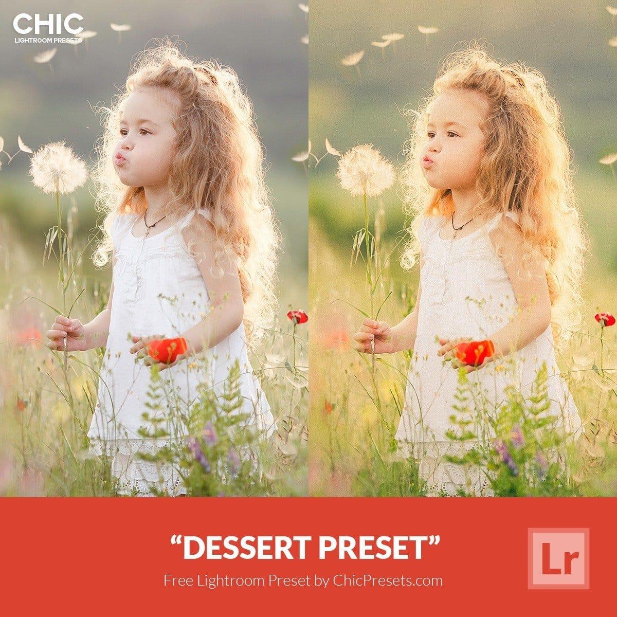 Free-Lightroom-Preset-Dessert-Presetpro.com
