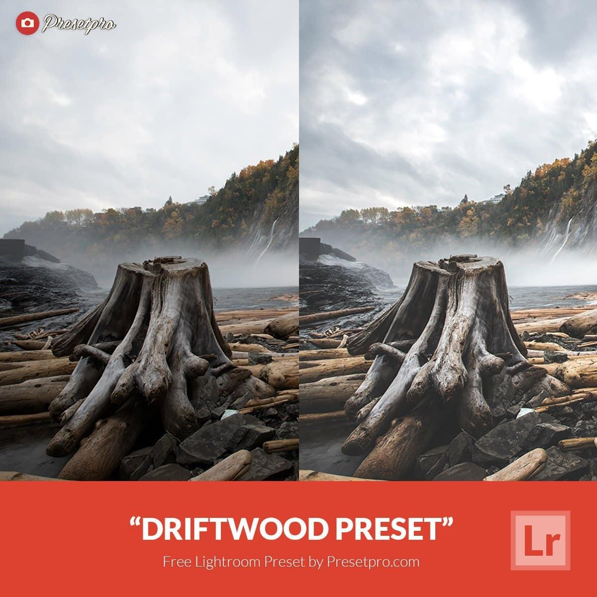 Free-Lightroom-Preset-Driftwood-Presetpro.com