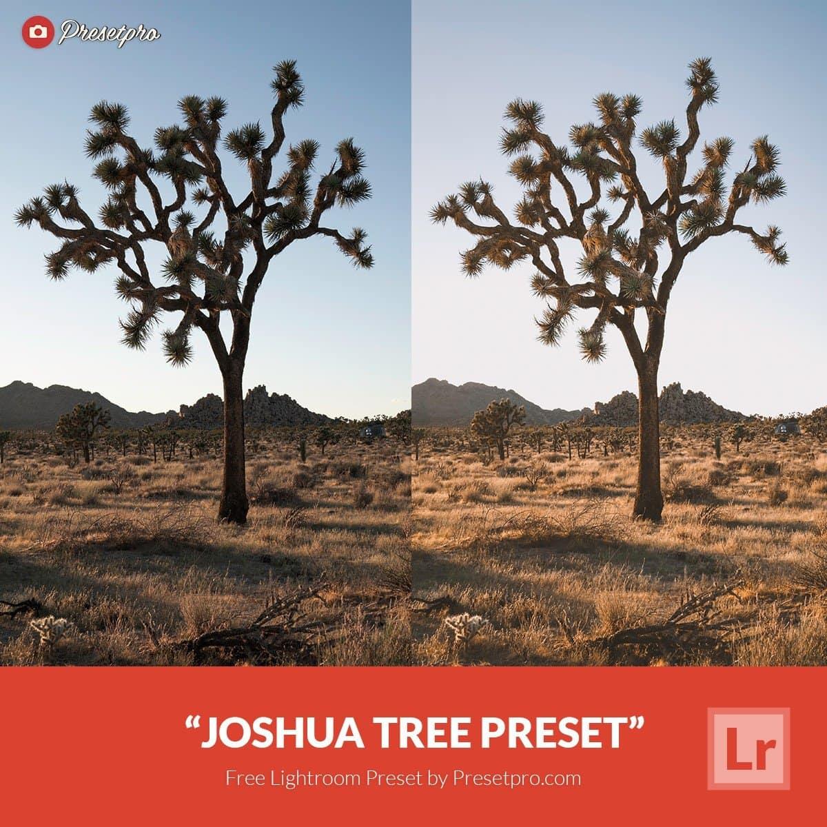 Free-Lightroom-Preset-Joshua-Tree-Presetpro.com