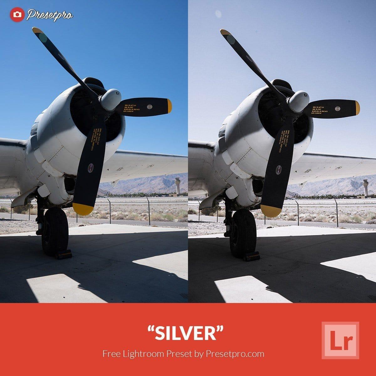 Free-Lightroom-Preset-Silver-Presetpro.com