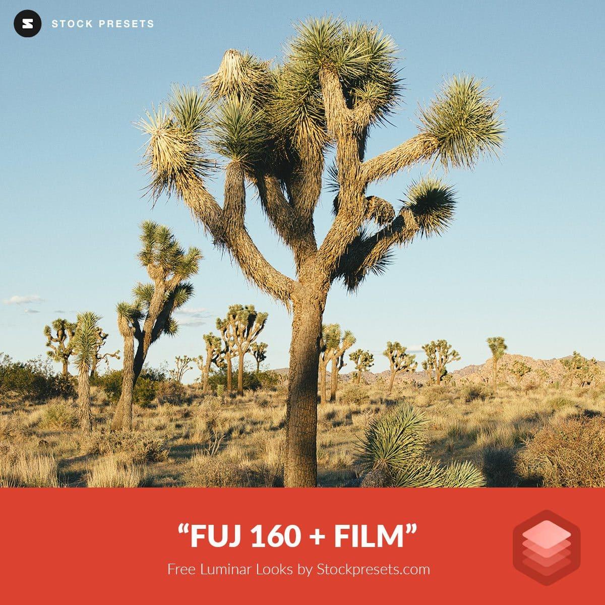 Free-Luminar-Look-FUJ-160-film-Preset-Stockpresets