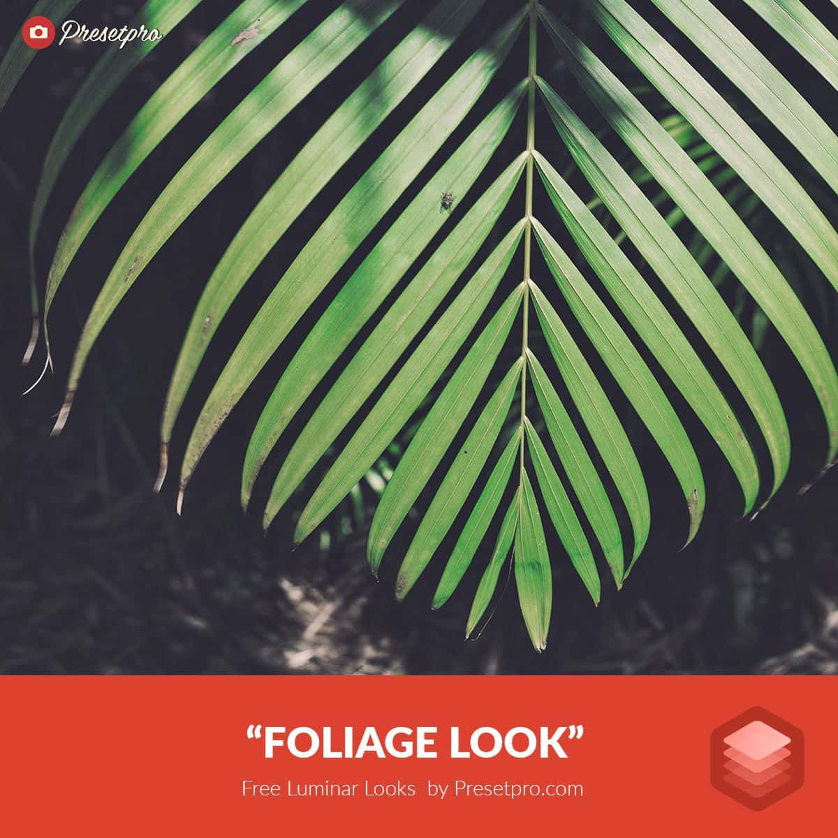 Free-Luminar-Look-Foliage-Preset-Presetpro.com