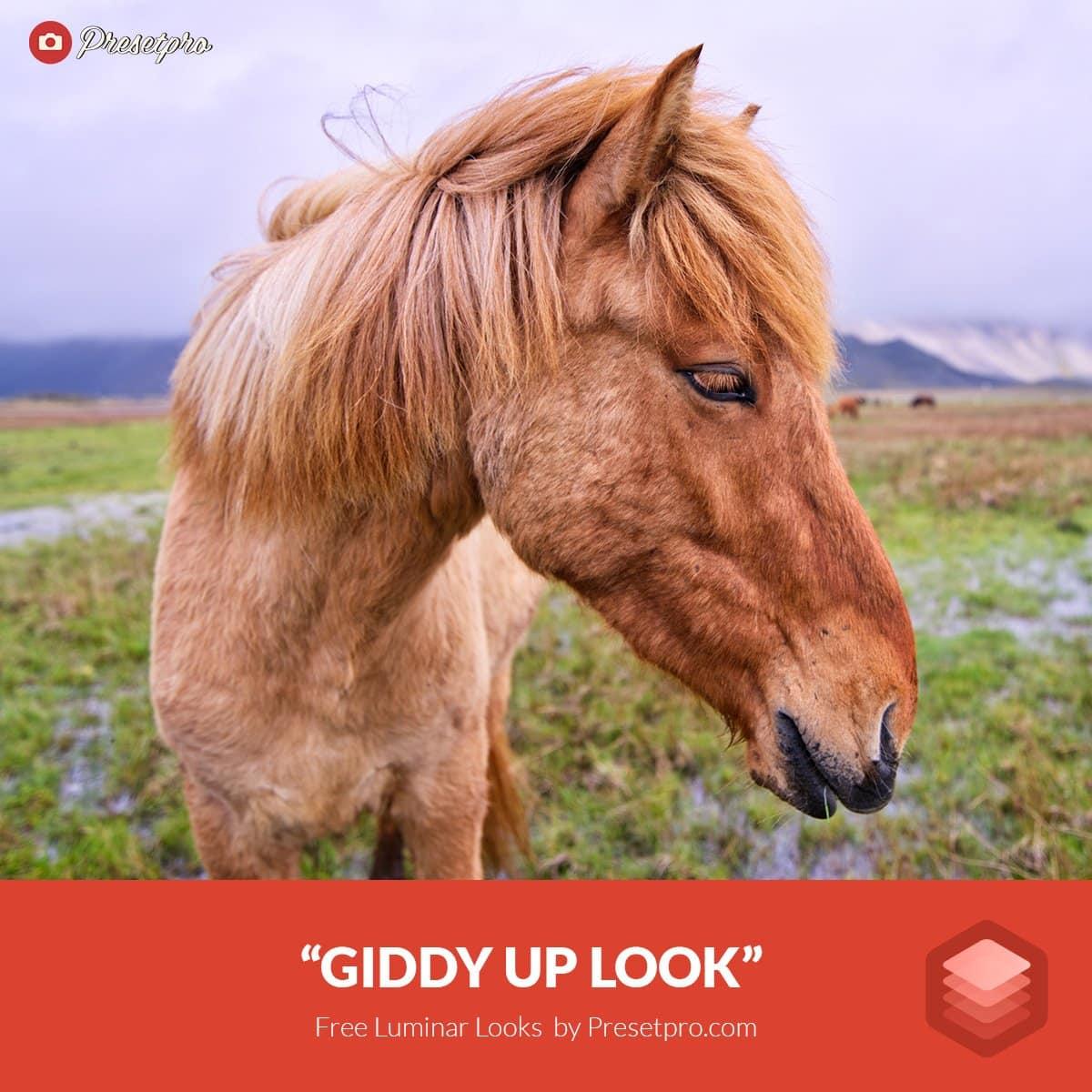 Free-Luminar-Look-Giddy-Up-Preset-Presetpro.com-