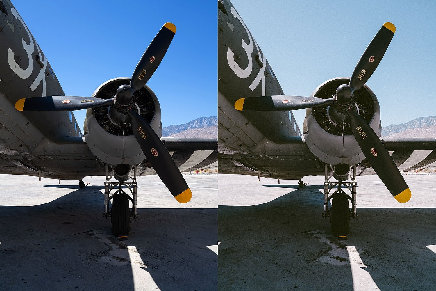 Beautiful-Lightroom-Presets-and-Profiles-Palm-Springs-War-Bird-Before-and-After-Presetpro.com
