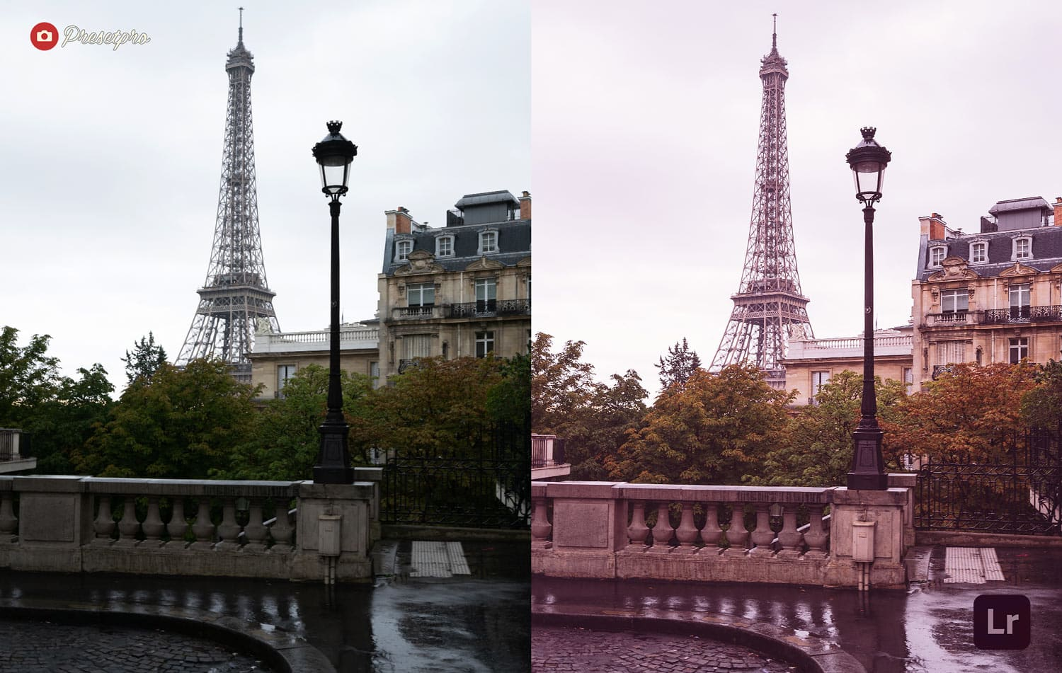 Free-Lightroom-Preset-Parisian-Pink-Before-and-After-Presetpro.com