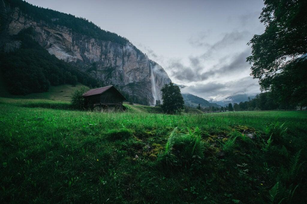 Misty Morning in Switzerland