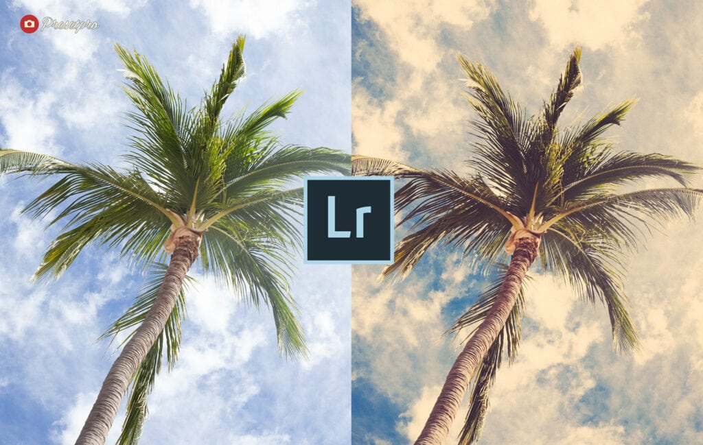 Free-Lightroom-Preset-Island-Breeze-Before-After-Presetpro
