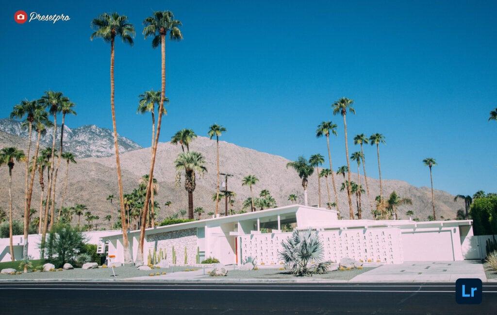 Free Lightroom Preset Palm Springs Cover