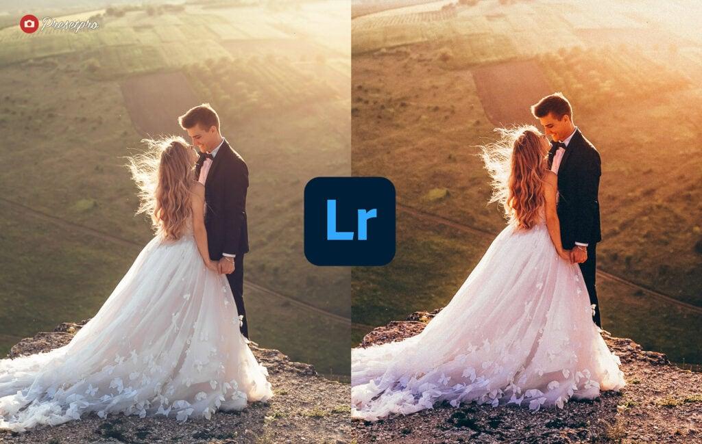 Free Lightroom Preset Golden Before and After Presetpro.com